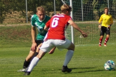 190818-SGOW_Fc_Kissingen_-DSC02921_Schilling_CD-Kopie